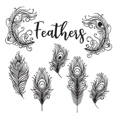 Vector illustration of beautiful peacock feather set isolated on a white background. Trendy hipster background, logotype, tattoo design element. Colorful gradient.