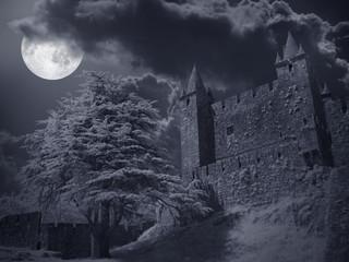 Fotobehang Kasteel Castle in a full moon night