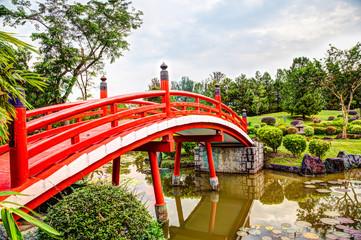 Japanese Garden Bridge in Singapore