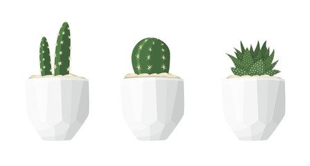 Cactus illustrations in a flat style isolated on a white background. Variety of decorative home plants cactus and succulent in white geometric minimalist ceramic pots. Set of vector flat illustrations