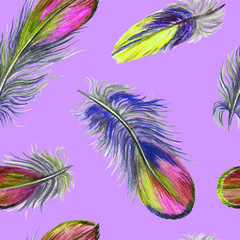 Watercolor seamless pattern of colored feathers on pink and purple background.