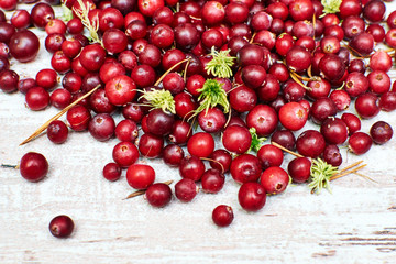 wild fresh cranberries closeup on a spectacular old worn boards