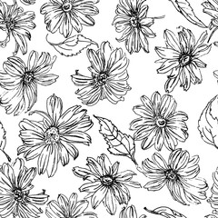 Chamomile flowers and leaves pencil drawn ornament pattern
