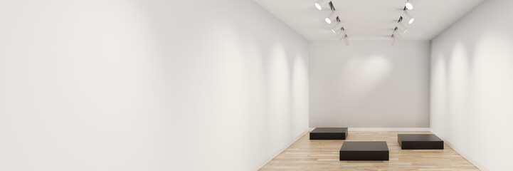 Empty museum showcase with customizable copy space. Original design and 3d rendering
