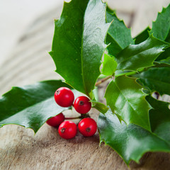 Holly on wooden background.