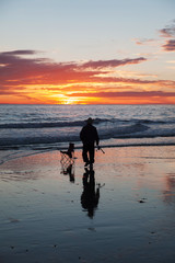 Silhouette of fisherman walking on beach during sunset