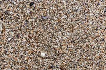 top view of Beach sand for background and texture. Summer background concept.