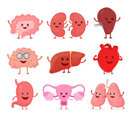 Cute smiling happy human healthy strong organs set