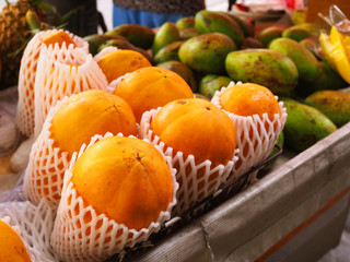 Fresh ripe yellow whole mango without peeled, packed in white polystyrene foam mesh for protection, stacked altogether with green raw ones, on Thai local fruit stall cart, perspective