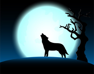 Halloween night with wolf and full moon background
