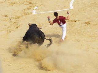 Competición de recortes con toros bravos en España. En esta competición la gente usa su propio cuerpo para torear
