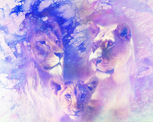 Lion family - lion, lioness and lion cub, on abstract structured background. Marble effect.