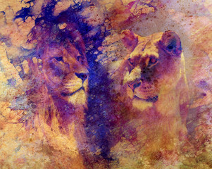 Lion couple - lion and lioness, on abstract structured background.