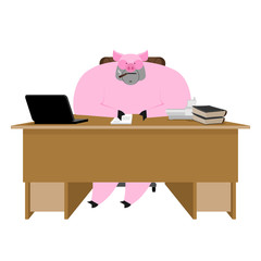 Pig boss. Piglet businessman at desk. Farm office. Vector illustration