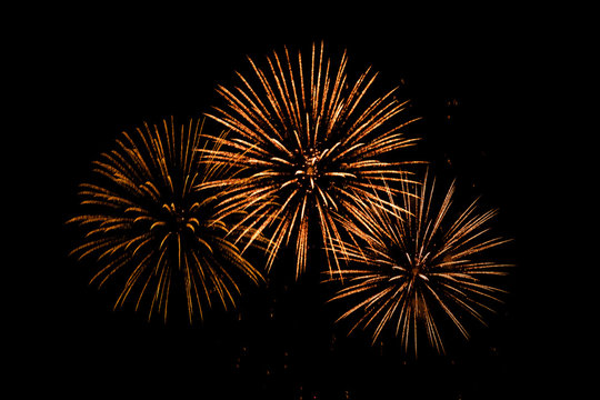 Nice colorful  Fireworks in the black sky main color is red tone