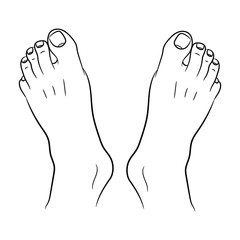 feet men top view from the contour black lines on white of vector illustration