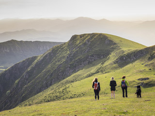 Rear view of hikers standing on grassy landscape