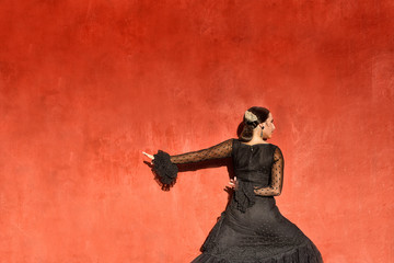 Professional flamenco dancer, Granada