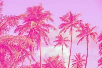 Printed kitchen splashbacks Purple palmiers, style pop art