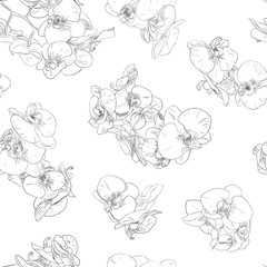 Flowers seamless pattern background line illustration orchids. Floral design elements.