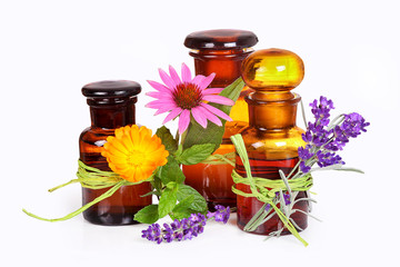 Wellness with lavender, calendula, echinacea