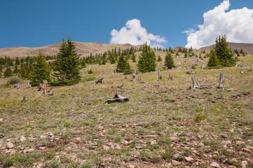 Boreas Pass Colorado