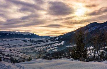 cloudy sunrise over the mountainous rural area in winter. beautiful countryside landscape with naked trees on snowy hillsides of Carpathian mountain ridge