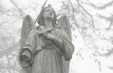 Statue of an angel at a cemetery in the fog