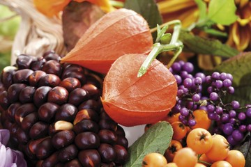 Autumn decoration: firethorn berries, beautyberries and Chinese lanterns