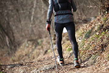 boy with poles Nordic walking during training in trail Wall mural