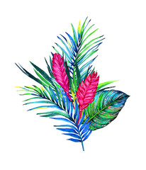 Tropical bouquet. Exotic flowers of bromelia, rain forest palm and calathea leaves.   Handmade watercolor vector, isolated on white background. Floral composition for your design.