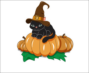 black cat on pumpkin
