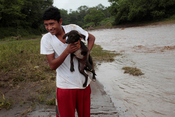 A boy carries his dog, as he try cross a river flooded by heavy rains by Tropical Storm Nate in Nandaime