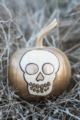 White pumpkin painted with a skull shape in gold and black paint