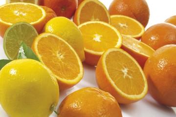 Fresh citrus fruit, oranges and lemons