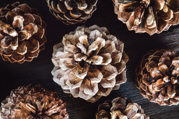 Pine Cones on Dark Table