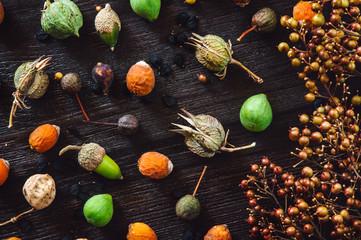 Seeds on Dark Table