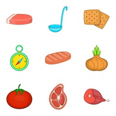 Meat party icons set, cartoon style