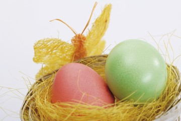 Pastel-coloured Easter eggs in a nest with butterfly decoration