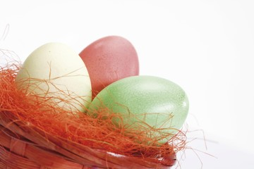 Pastel-coloured Easter eggs in a nest