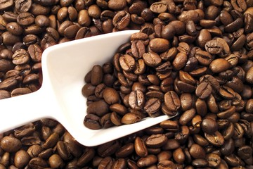 Coffee beans and white scoop filling entire image