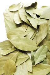 Bay leaves, Bay Laurel (Laurus nobilis)