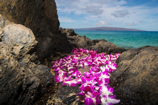 Fresh Hawaiian Lei at an ocean beach
