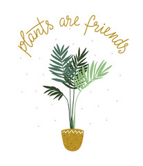Poster about cultivating home tropical plants and text - 'Planats are friends'. Hand drawn illustration in scandinavian style. Vector design.