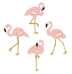 Vector set with four pink flamingos isolated on the white background. Flat design.
