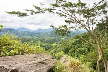 Uthuwankanda, Kandy, Sri Lanka, Asia