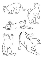 Cat line on a white background vector 05. Good use for symbol, logo, web icon, mascot, sign, or any design you want.