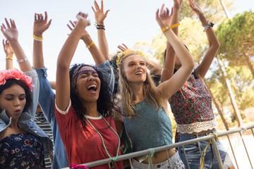 Cheerful female fans enjoying at music festival