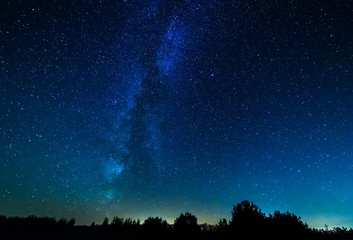The milky way over the forest.