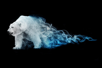 polar bear animal kingdom collection with amazing effect